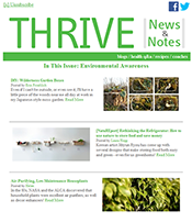 THRIVE Email Newsletter from HelloLife®